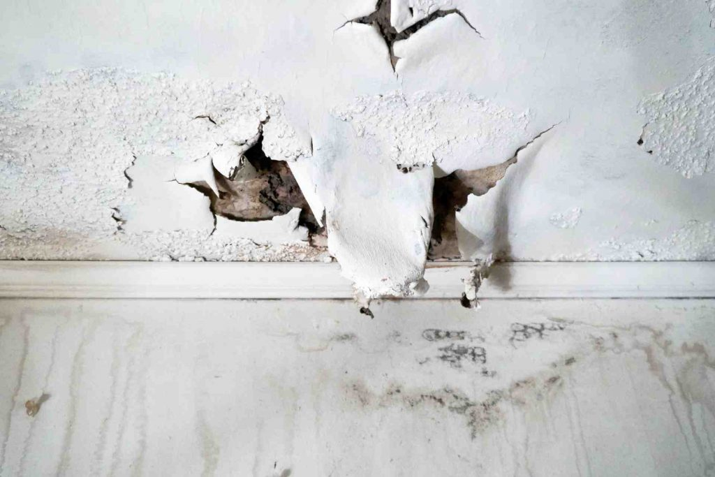 Water Damage Central Coast